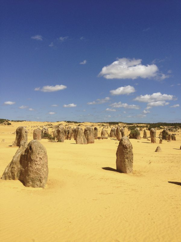 The Pinnacles, Nambung National Park, WA
