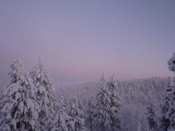 2010フィンランド 283